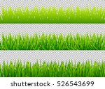 green grass borders set on... | Shutterstock .eps vector #526543699