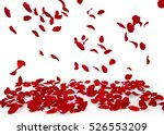 Stock photo rose petals fall to the floor isolated background 526553209