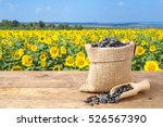 sunflower seeds in burlap bag... | Shutterstock . vector #526567390