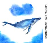 watercolor whale on blue... | Shutterstock . vector #526750384