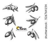 6 olive sketch branches... | Shutterstock .eps vector #526764154