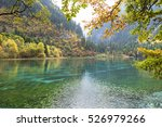 the colorful autumn of...   Shutterstock . vector #526979266