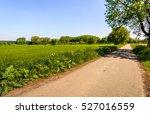 straight and narrow asphalt... | Shutterstock . vector #527016559