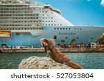 Small photo of Nassau, Bahamas - Sep 30, 2013: Royal Caribbean cruise ship Allure of the Seas docked at port with a sea iguana in the foreground