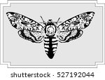 butterfly hand drawing  ... | Shutterstock .eps vector #527192044