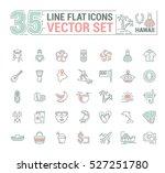 vector graphics set.... | Shutterstock .eps vector #527251780
