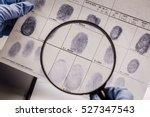 Criminology Expert Through A...