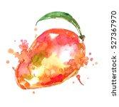 watercolor mango.   Shutterstock . vector #527367970
