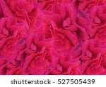 Stock photo red rose background pattern 527505439