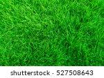 Green Grass Natural Background...