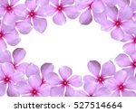 pink flower pattern frame with...   Shutterstock . vector #527514664