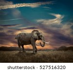 elephant with trunks and big... | Shutterstock . vector #527516320