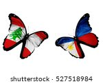 Concept   Two Butterflies With...