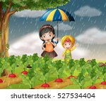 kids in the garden when it is... | Shutterstock .eps vector #527534404