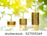 step of golden coins stacks on... | Shutterstock . vector #527555269