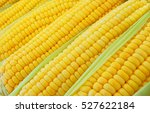 Sweet Corn Ears Background