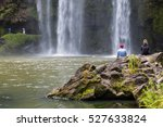 Waterfall In New Zealand Fores...