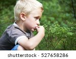 young child blond boy eating... | Shutterstock . vector #527658286