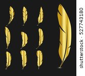 set of gold feathers. vector... | Shutterstock .eps vector #527743180