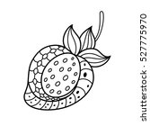 hand drawn strawberry in the... | Shutterstock .eps vector #527775970
