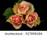 close up of bouquet pastel... | Shutterstock . vector #527898184
