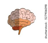 human brain mind icon vector... | Shutterstock .eps vector #527906098