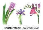 Three Lilac Flowers Freesia ...