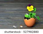 Easter Card  Spring Flowers In...