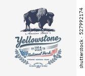 American Bison  National Park...