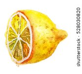 cute watercolor lemon... | Shutterstock . vector #528030820