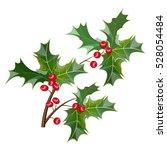 a sprig of mistletoe plants.... | Shutterstock .eps vector #528054484
