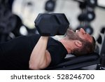 adult man with weight training... | Shutterstock . vector #528246700