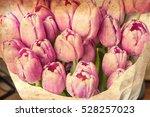anniversary tulip flower... | Shutterstock . vector #528257023