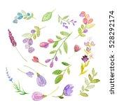 watercolor hand drawn flowers | Shutterstock . vector #528292174