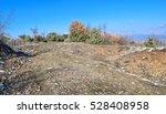 wild balkans nature. eastern...   Shutterstock . vector #528408958