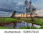 gloomy sunset around field with ... | Shutterstock . vector #528417613