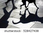Shadow Of A Dog And Its Owner...