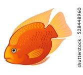 Tropical Cartoon Fish Orange...