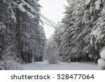 Power Lines In The Snowy Frost...