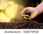 the hand of a children are... | Shutterstock . vector #528574930