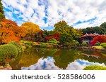 Autumn Leaves At Shinjuku Gyoe...
