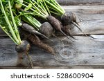 imperfect organic round and... | Shutterstock . vector #528600904