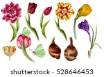 Big Set Of Watercolor Spring...
