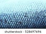 Fish Scale  Closeup