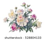 white peonies spray watercolor... | Shutterstock . vector #528804133
