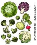 set of colored vegetables.... | Shutterstock .eps vector #528832234