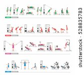 set workout in gym for the arms ... | Shutterstock .eps vector #528835783