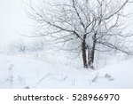 winter snowy forest  branches... | Shutterstock . vector #528966970