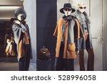 elegant women clothing in a... | Shutterstock . vector #528996058