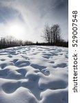 snow field texture background.... | Shutterstock . vector #529007548